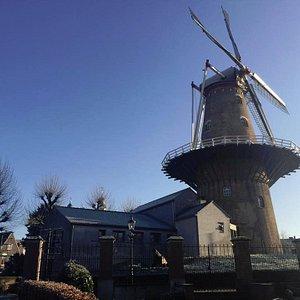 De brouwerij is gevestigd in het bijgebouw van de molen De Nijverheid
