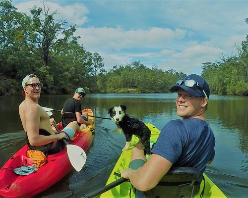 Our expert kayaking guide dog Mojo is available to show you an amazing day on the river!