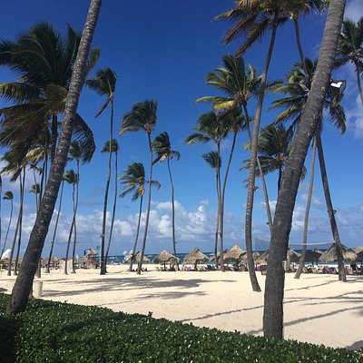 Go Dominican Travel