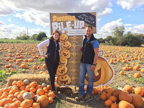 It's the pumpkin pile up! How tall are you? Measure yourself each year!