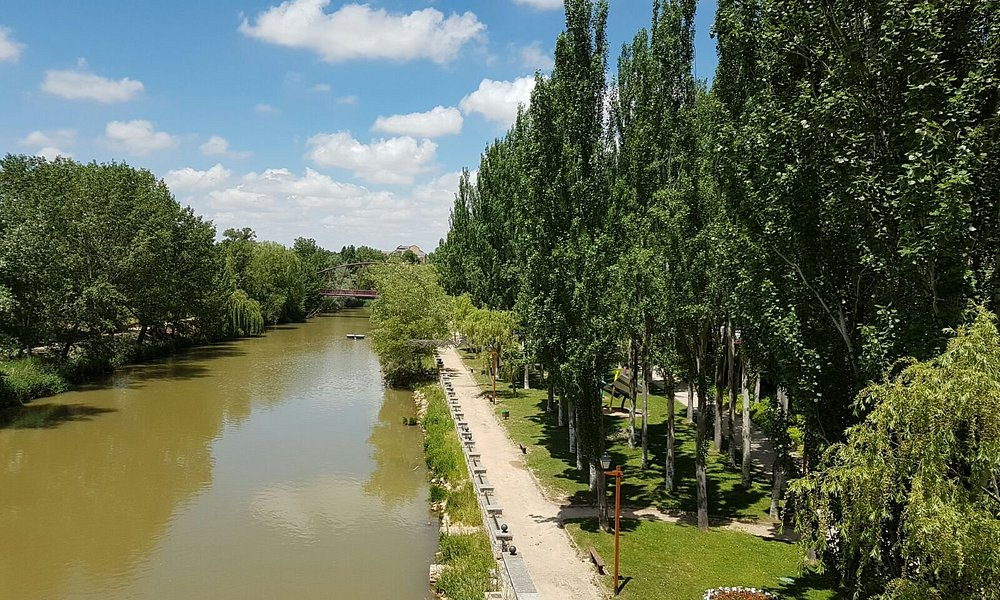 Río Duero a su paso por Aranda de Duero