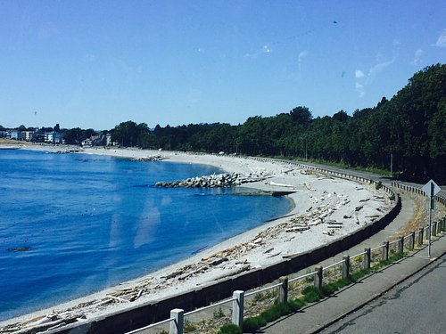 beach on scenic marine route