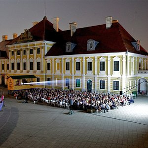 Screening at the Vukovar Film Festival, taking place in august every year