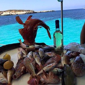 Pesca e mangia nel blu!