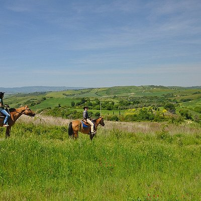 Horse riding tours in spring time
