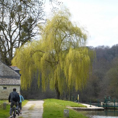 Brittany Cycle Tours: river Blavet discovery tour; vehicle-free towpath; lock gates; weeping wil