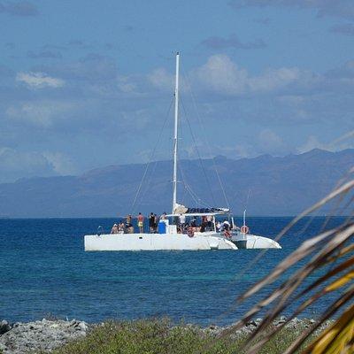 Le catamaran (nous étions 60 à embarquer)