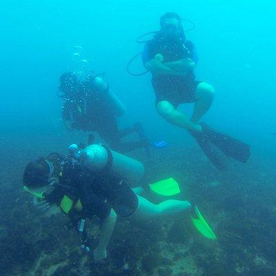 mergulho com a caju divers