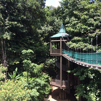 Ovehead suspended bridge