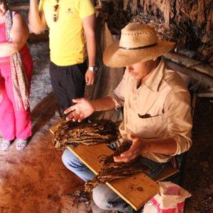 Cubatur - Vinales Valley -Cigar rolling