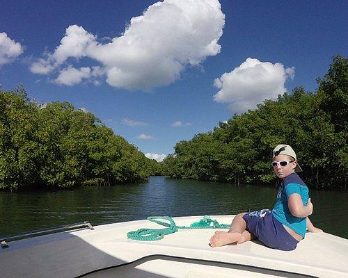visite de la mangrove a grand cul de sac marin