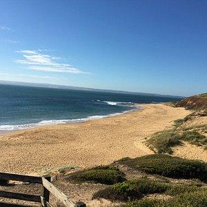 Flynns Beach looking one way