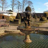 Fish Pond in Walled garden