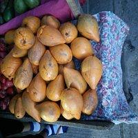 Tesa fruits