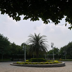 Внутри парка