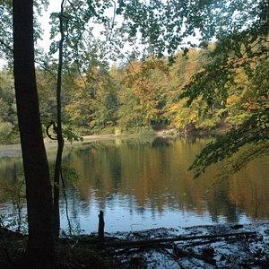 "Nature reserve ""Zwiezlo"""
