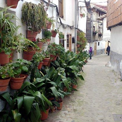 calle tipica del barrio judio