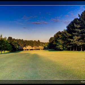 A view from the center of our 5th fairway, looking toward the green.