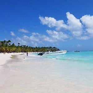 Beach of Isla Saona