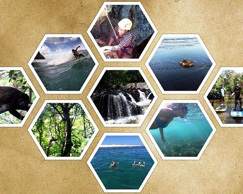 Snorkel Tour, Waterfall Tours, Quad Tours, Turtles Tour, Jungle Hike, Surfing Tours and Caves