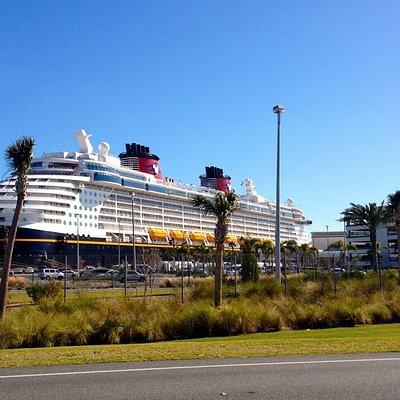 Disney Cruise Transportation