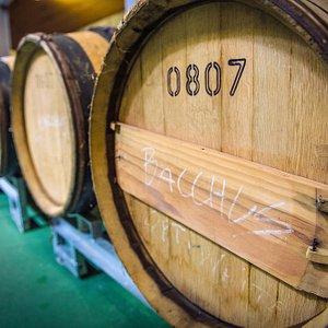 Denbies Winery