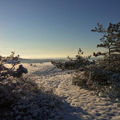 Vinter på Storesand - Ytre Hvaler Nasjonalpark