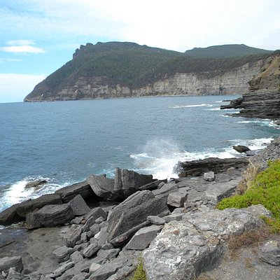 Coastal view from fossil rocks