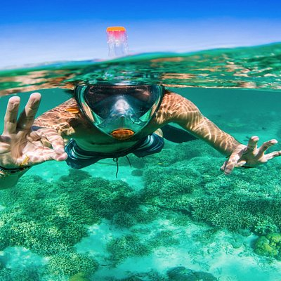 The Best Snorkeling Experience Possible!