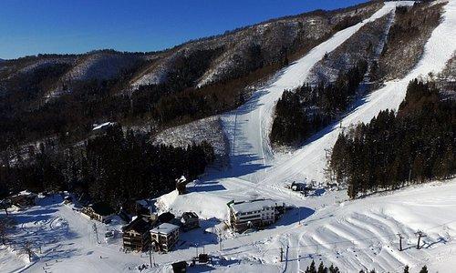 Nozawa Onsen's ski out hotel right at the base of Kandahar and Utopia slopes