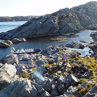 """""""Fra fjord til munn"""" – the concept of fjord cuisines"""