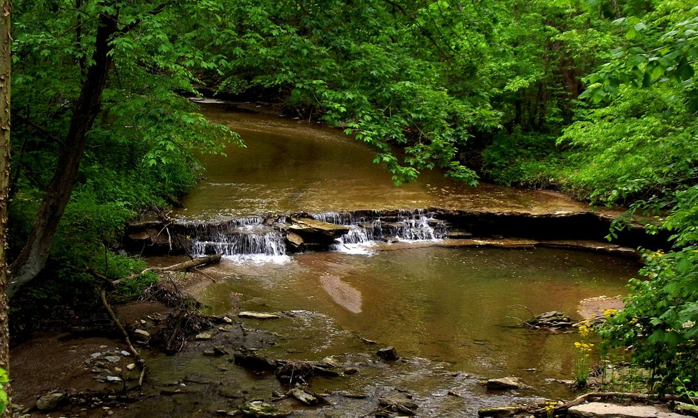 Blue Clay Falls