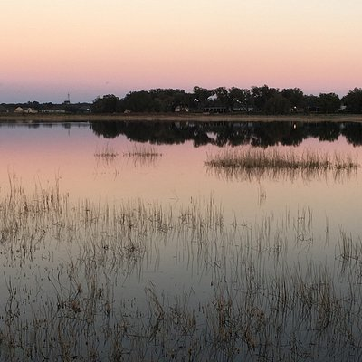 Wildlife & View at the Sharon Rose Wiechens Preserve