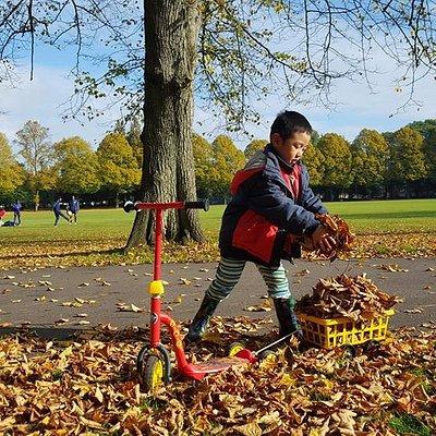 Awsome autumn