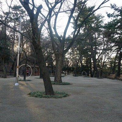 Haksung park