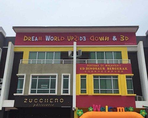 Dream World Upside Down & 3D