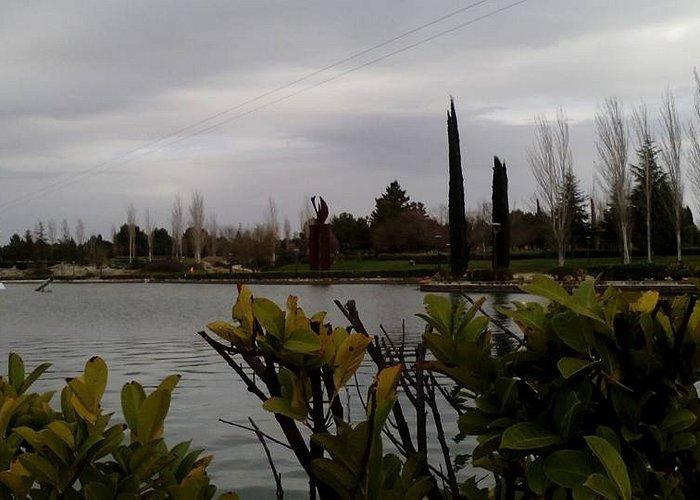 Parque Municipal Juan Carlos I, Pinto, Provincia de Madrid.