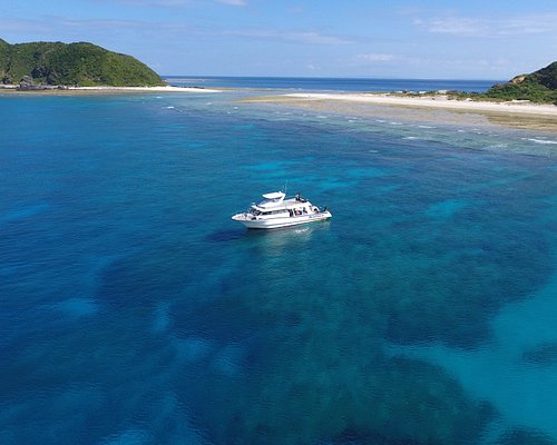 どこまでも青く透明度の高い海のケラマ諸島で感動体験を