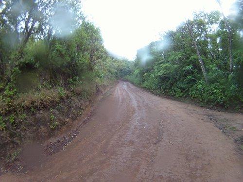 The trail/road to Cerro Amigos