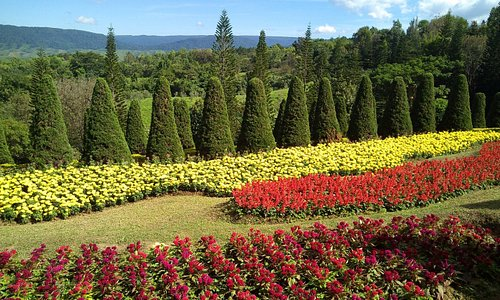 Phu Paek flowergarden