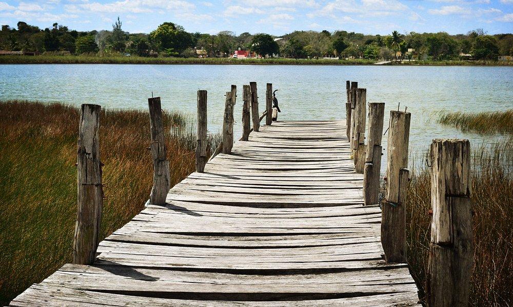 Along Lago Coba