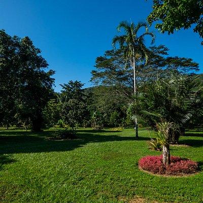 Belize Botanical Garden