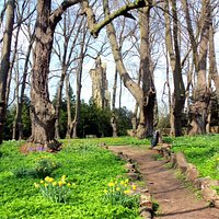 Path through the monks walk at Guisborough Priory