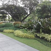 Ayala Triangle ll, some of the landscaping