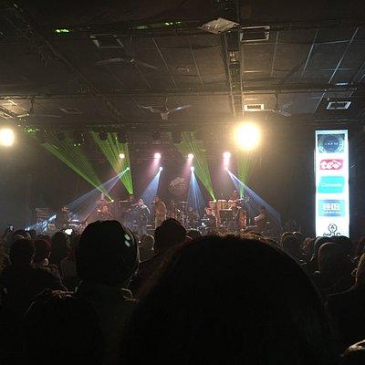 Amazing Hamza Amira concert!