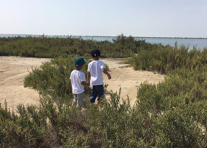 Hameem Beach view