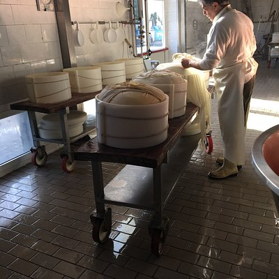 Cheese storage & production