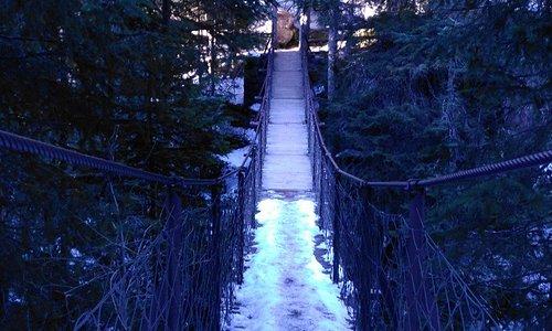 Parco Paneveggio Ponte Sospeso