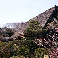植物園内の合掌造りの家