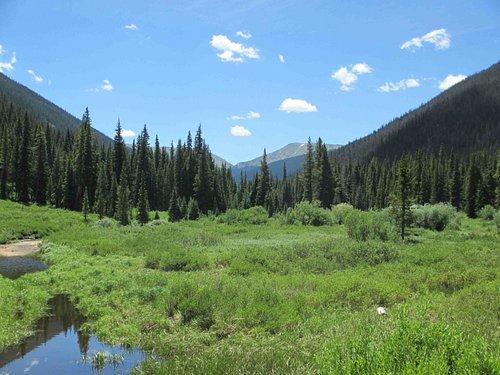 Vasquez Peak Wilderness